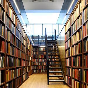 Библиотеки Лузы
